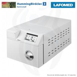 HummingBirdclav 3